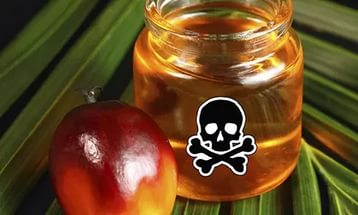 Пальмовое масло и вред Киндер-сюрприза