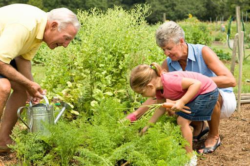 Бабушки и дедушки очень нужны нашим детям!