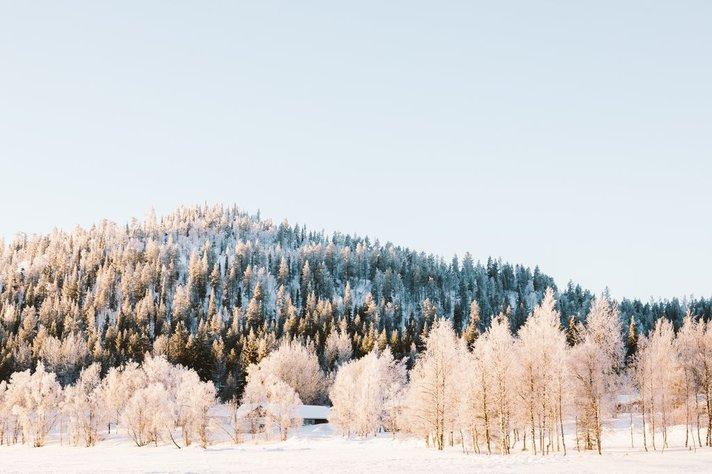 Стихи о зиме, снеге, морозе, метелях и вьюгах